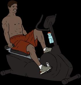 schwinn recumbent bike