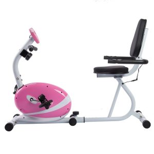 sunny health fitness magnetic recumbent bike review